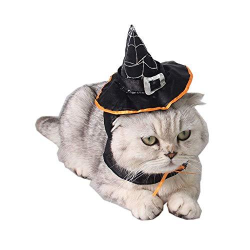 Homiego Halloween Katze Hexe Hat Pet Wizard mit Kopfbedeckungen Katzen & Kleine Hunde Party Kostüm Einheitsgröße, Cat Witch Hat (Hexe Kostüm Für Hunde)