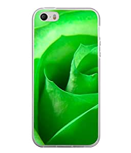Fuson Designer Back Case Cover for Apple iPhone 4S (Flower Green Natural Image Girls Women Housewife)