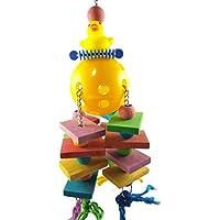 forniture per pappagalli Blocchi di sospensione durevoli in legno colorati Bead String Bite Grande medio e piccolo Pet Bird Stand Rack Gioco Campane giocattolo Giocattolo da masticare per uccelli Arredamento e forniture scuola prima infanzia Casette giocattolo