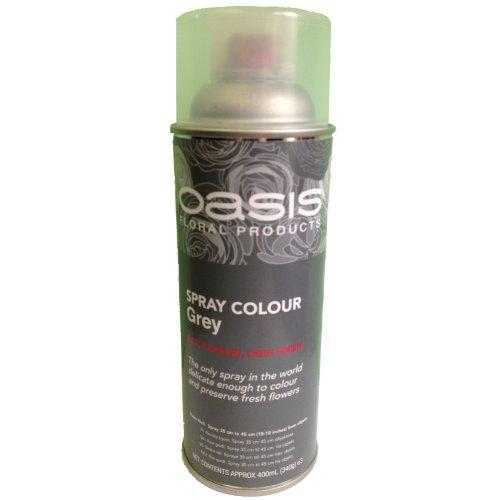 floral-spray-paint-colour-400ml-aerosol-can-grey