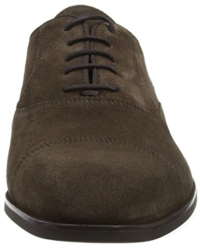 Geox U New Life e, Scarpe Stringate Oxford Uomo Marrone (Chocolate)