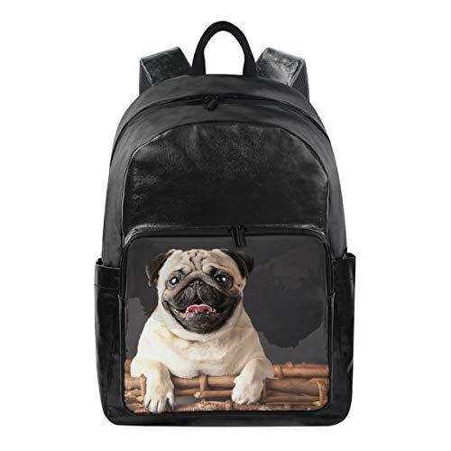 ISAOA modischer wasserdichter Rucksack für Schule, Laptop-Tasche, 39,6 cm (15,6 Zoll), Französische Bulldogge, Computer-Reisen, Freizeit-Rucksack für Reisen, Business, College und Damen -