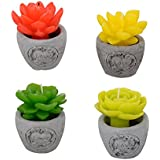 Aapno Rajasthan Beautiful Floral Shape Decorative Candles With Stand (Set Of 4)