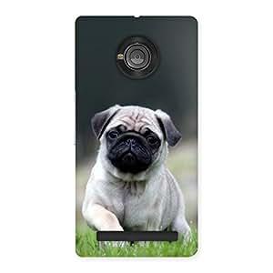 Voila Cuty Pug Dog Back Case Cover for Yu Yuphoria