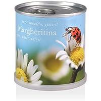 Extragifts Fiori in lattina - Margheritina