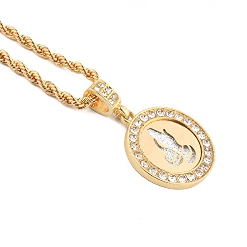 Praying Hands crystal Necklace Christian Jewelry Gold Stainless Coin Medal Pendant (Glod)