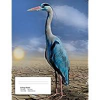 Help!: Heron - Climate Crisis