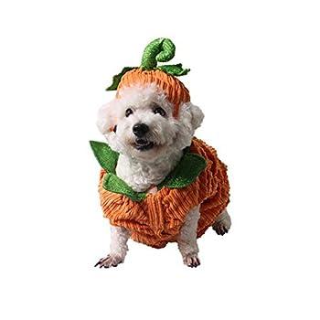 MRXUE Pet Chat Petit Chien Effrayant Halloween Noël Citrouille Gros Vêtements Chapeau 5 Tailles Adaptées À Toutes Sortes d'animaux De Compagnie,XXL