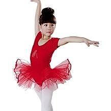 Lenfesh Ropa de Ballet para Niña, Ballet Zapatillas Imprimir Maillot de Ballet Danza Tutú para