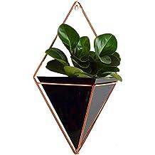 Suchergebnis auf f r b ro pflanze for Wandhalterung pflanzen