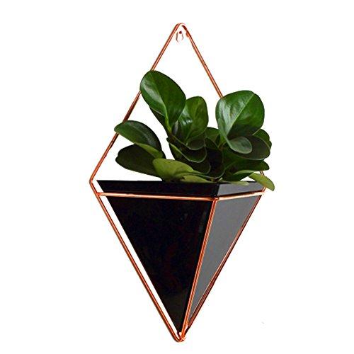 Ménage à suspendre Pots de fleurs, supports de plante d'intérieur Décoration murale à suspendre Succulents Pot de fleurs, Air Plante support pour plantes artificielles, Air, Mini Cactus, imitation plantes L noir