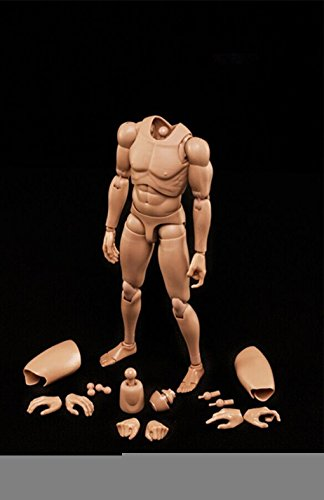 1-6-scale-action-figure-male-muscular-male-nude-body-doll-toys-asain-skin-for-ht-dam-cd-crazy-dummy-