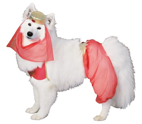 Rubie's Pet Costume, Harem Dog, Medium by (Hund Harem Kostüme)