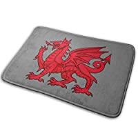 BIRSY Welsh Dragon Non Slip Doormat Entrance Mat Floor Mat For Outdoor/Office/Bathroom/Kitchen 18x30(IN)