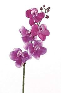 Orchidea 5fiori circa 6cm, artificiale Phaleno Phalenopsis Lunghezza complessiva ca. 42cm Rosa pink