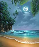 5D-Diamantbild zum Selbermachen, Strand im Mondschein, Strassstickerei, Basteln, als Deko für Zuhause
