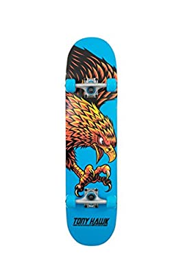 Tony Hawk Skateboard Diving Hawk