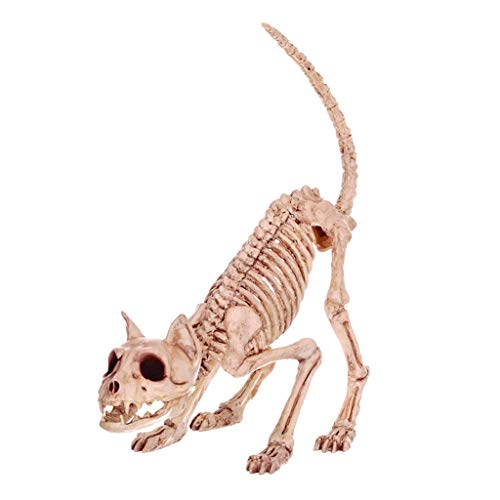 C&S Retro Katze Skelett Spuk Haus Tier Skelett Horror Bar Film Requisiten Halloween Ornament