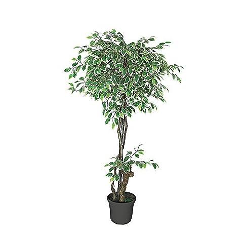 Ficus Benjamina Plante Arbre Artificielle Artificiel Plastique Blanc avec Bois Véritable 160cm Domaine Interne Decovego