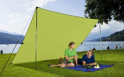 Berger Tarp grün, in verschiedenen Größen, Sonnenschutz für Garten Terasse Camping und Strand (2 x 3 m) (Sonnenschutz Camping)