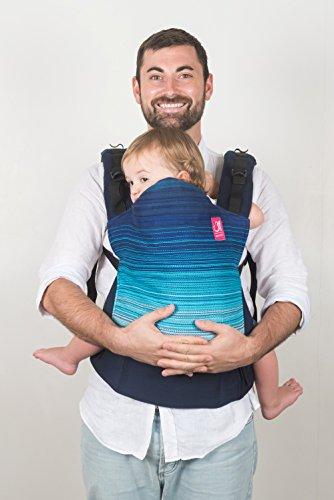 Anmol Baby Carriers – Videh (Sem...