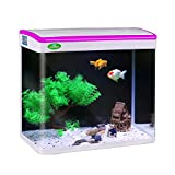 Fish Tanks Review and Comparison