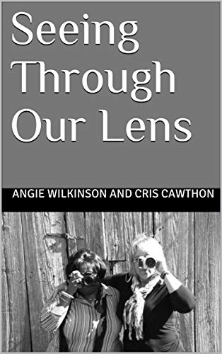 Seeing through our lens (English Edition)