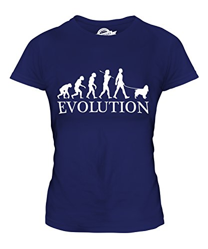 Candymix - Springer Spaniel Evolution Of Man - Ladies Fitted T Shirt Top T-Shirt