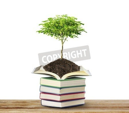 "Poster-Bild 50 x 40 cm: ""books with tree isolated on white "", Bild auf Poster"