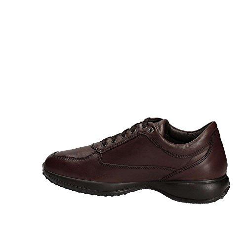 Igi&Co 8697 Sneakers Man Brun
