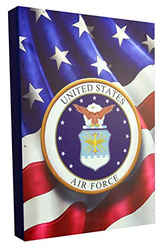 y Licensed Military Schild, Air Force, 10,5x15 inch ()