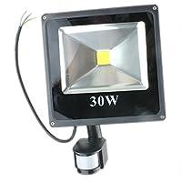 PMS 10W20W/30W/50W Delgado LED Foco proyector Luz, con iluminación LED y PIR sensor de movimiento (30W, Blanco Frío )