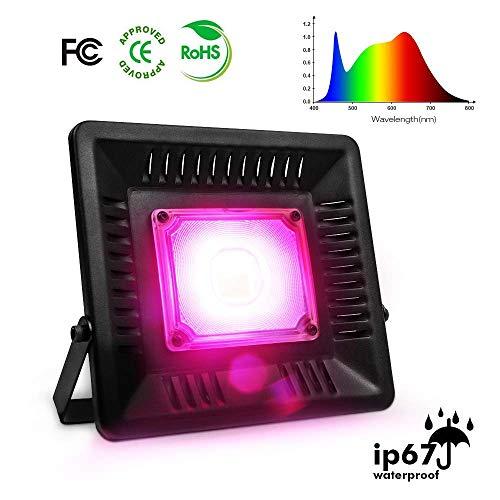 BG ANGEL Luz de Planta LED, 100 W Lámpara de Planta de Espectro Completo Impermeable Bulbos de Cultivo Lámparas de Plantas COB Sin Ruido para Plantas de Interior y Exterior (100 W)