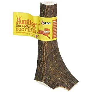 Antos Antler Natural Dog Chew, Large