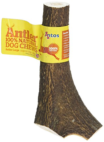 Antos Antler Natural Dog Chew (Size: Large) -
