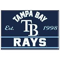 WinCraft MLB TAMPA BAY RAYS Metall Magnet