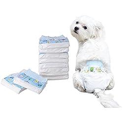 Pañal de papel para perros Pañal desechable Pañal para perros Pañales de entrenamiento Pañales sanitarios Pañales paquetes de 10