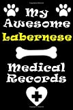 My Labernese Medical Records Notebook / Journal 6x9 with 120 Pages Keepsake Dog log: for Labernese lover Vaccinations, Vet Visits, Pertinent Info and ... keepsake Medical Logbook journal notebook