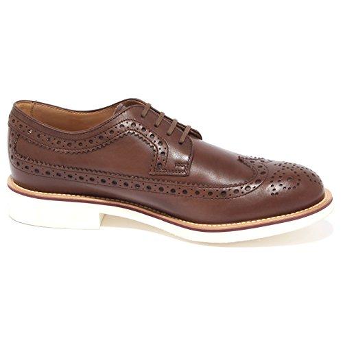 4423Q scarpa classica inglese TOD'S scarpe marrone shoes men Marrone
