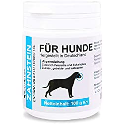 Vicupets® Zahnstein 100g Pulver für Hunde | Natürliche Zahnpflege I Reinigung für Zähne & Zahnfleisch I Ergänzungsfuttermittel