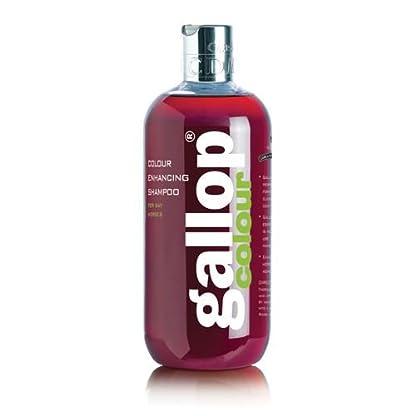 Carr & Day & Martin Gallop Colour Enhancing Shampoo, Black 4