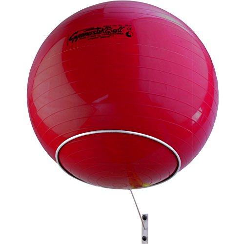 top | vit Premium Wandhalterung Aufbewahrung von einem Gymnastikball, weiß