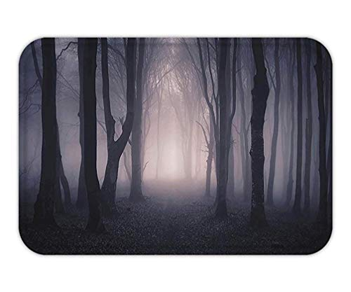 BagsPillow Doormat Farm House Decor Path Through Dark Deep in Forest with Fog Halloween Creepy Twisted BranchePicture Fabric Bathroom Set with Hook Extra Long Pink and Brown.jpg (Halloween Loofahs Für)