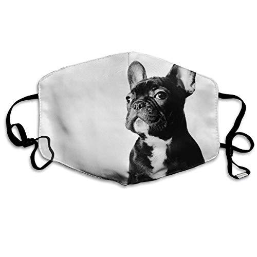 Gesichtsmaske für Damen und Herren, Anti-Staub, mit Ohrschlaufe, Schwarz/Französische Bulldogge/Weiß