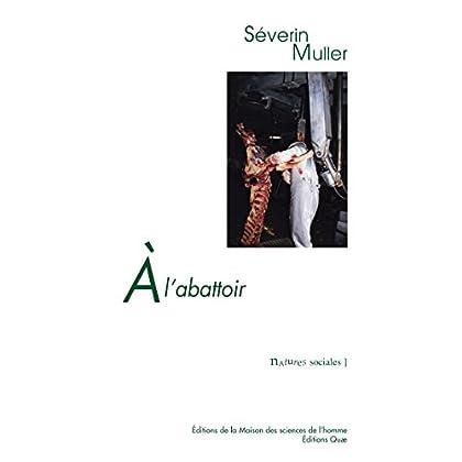 A l'abattoir: Travail et relations professionnelles face au risque sanitaire (Natures sociales)
