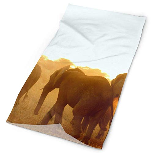 Sunrise African Elephant Stirnband Unisex Headwrap Magic Head Scarf Bandana Headwear Neck Scarf Quick Dry Balaclava Design Headdress Scrunchie Face Mask Neck Gaiter -
