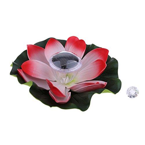 bene Lotosblume Lampe Schwimmende Wasserlicht chinesische Laterne aus Kunststoff ()