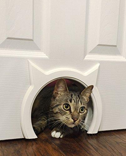 The Kitty Pass Interior Cat Door, Pet Door Hidden Litter Box box by The Kitty Pass