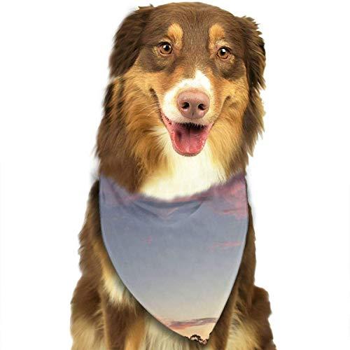 Gxdchfj Gorgeous Sunrise Fashion Dog Bandana Pet Accessories Easy Wash Scarf