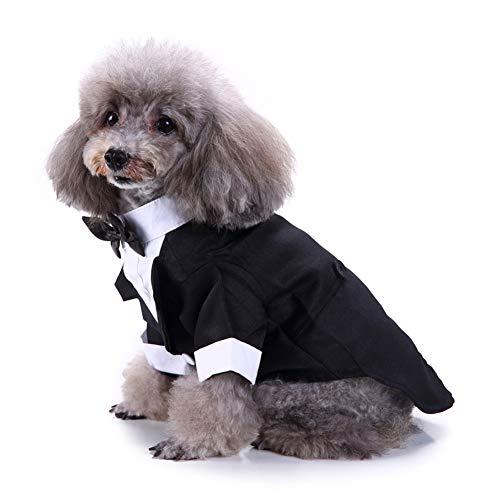 LPxdywlk Haustier Hund Formale Hochzeit Fliege Smoking Anzug Jacke Party Bräutigam Kostüm Kleidung Mode Urlaub Shrit Schwarz (Hunde Bräutigam Kostüm)